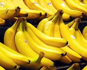 Photo credit: Bananas (2006) by photographer Steve Hopson, www.stevehopson.com. Via wikicommons.