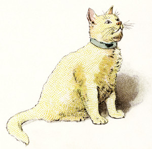 OldDesignShop_YellowCat-300x295