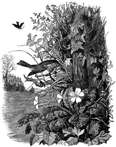 By Randolph Caldecott (1846-1886) [Public domain], via Wikimedia Commons